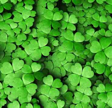 10 St. Patrick's Day Party Ideas So Fun You Need To Try Them