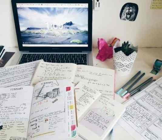 5 Different Effective Ways To Study For Exams