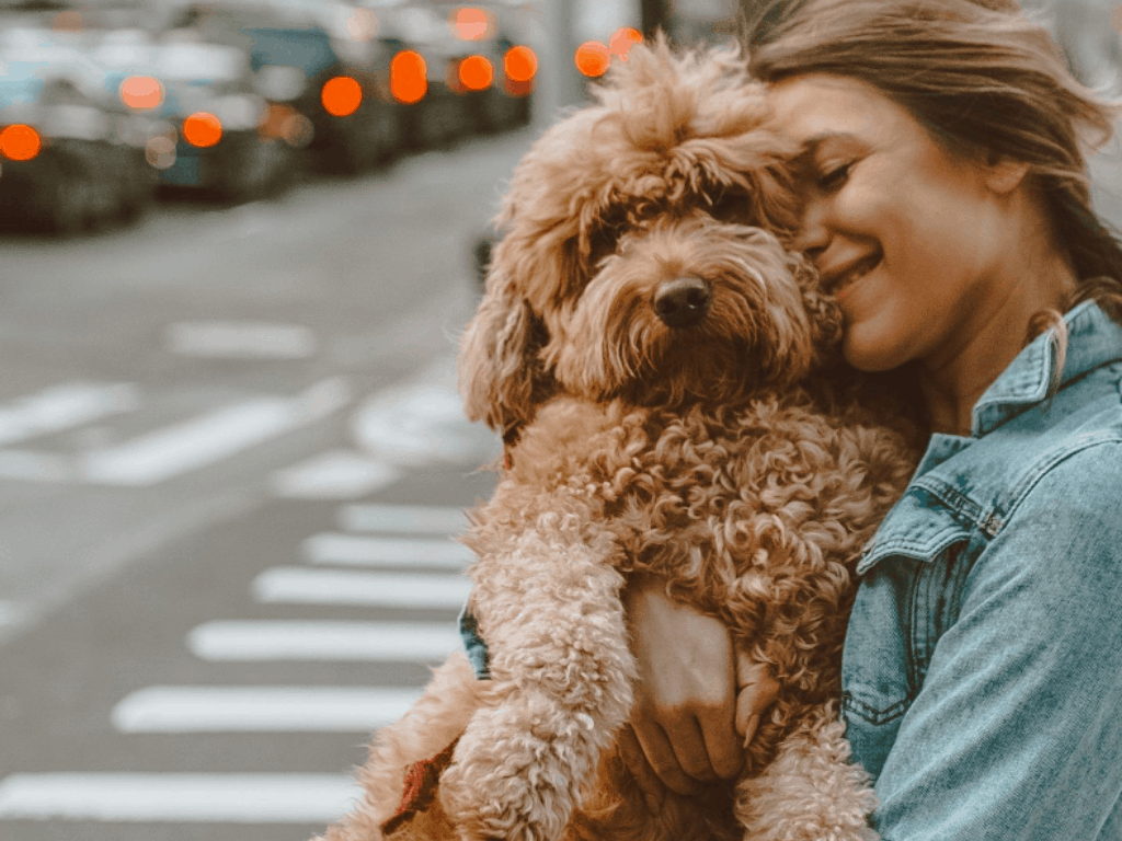 Pets For Each Of The Zodiac Signs