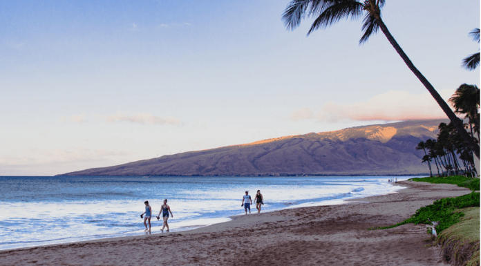 Top 10 Beaches In Maui To Visit This Summer