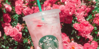 The New Starbucks Summer Drinks List, And Trust Us, It's Good