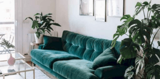The Best Decor To Help Make Your First Apartment Cozier