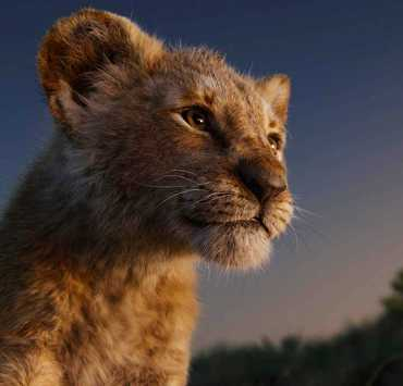 We Need To Talk About The New Lion King