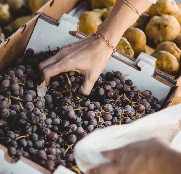 10 All Most Popular Items At The Studio City Farmer's Market
