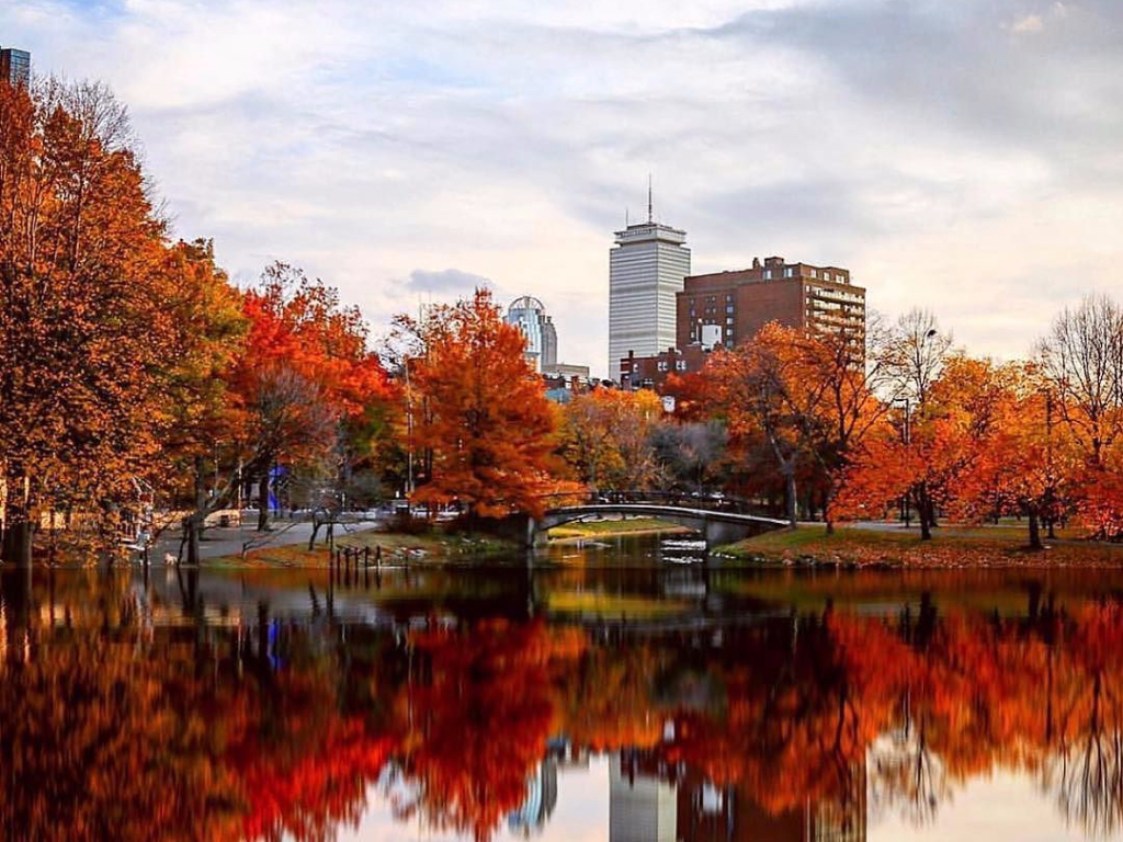 events in boston, 8 Events In Boston You Can't Miss Out On