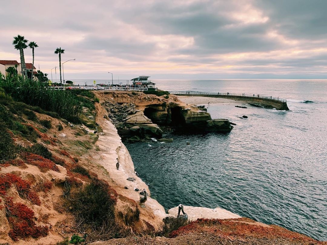 10 Places You Must See If You're New To San Diego
