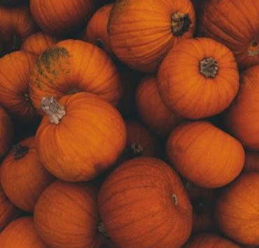 10 Delicious Pumpkin Recipes You Should Make