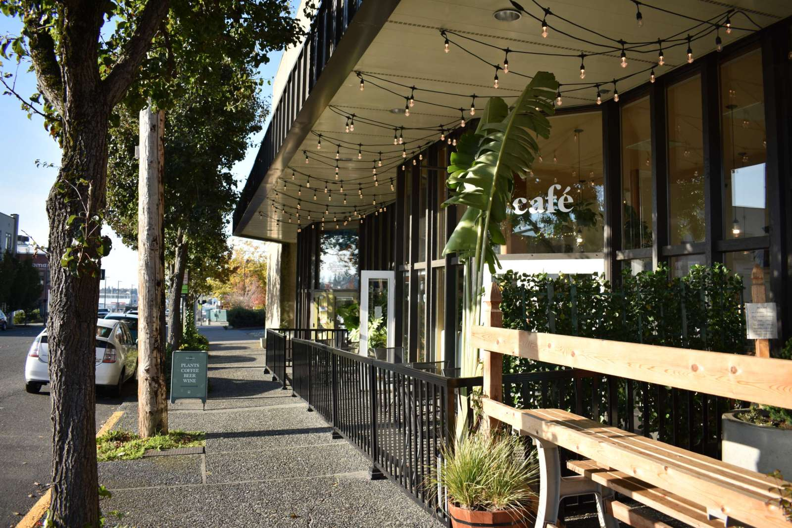 Bellingham, Cafes You Must Visit In Bellingham, Washington