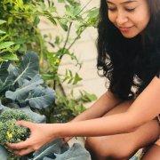Organic Gardening, 10 Easy Organic Gardening Tips That Will Keep Your Garden Hardy