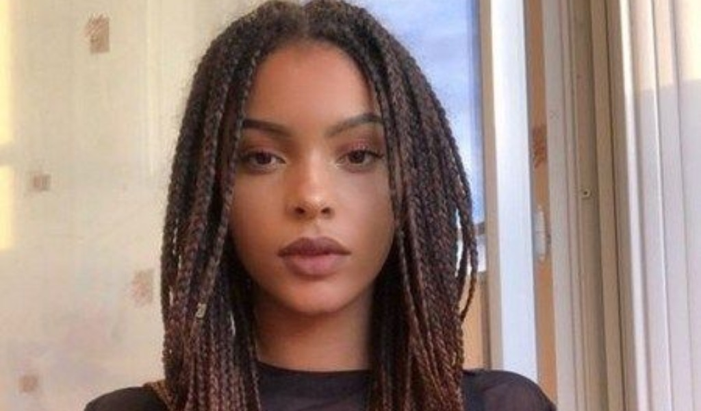 20 Braid Hairstyles You Will Want To Rock
