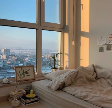 7 Affordable Ways To Decorate Your First Apartment