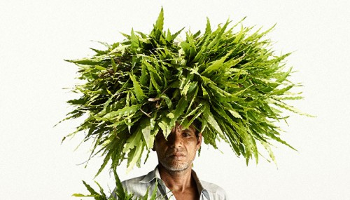 Photographer Finds The Good Side In 'Flower Men' Instead Showing Poor And Bad In India