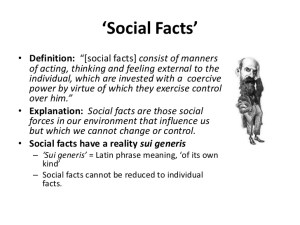 social facts-types and meaning