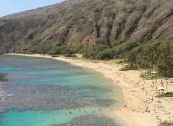 You would think that at a beautiful beach like Hanauma Bay, Hawaii it would be easy to forget about social media