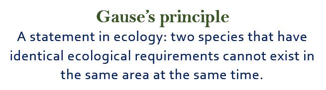 Gause's principle