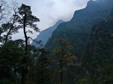 Emeishan - Einer der vier wichtigsten buddhistischen Berge Sichuans