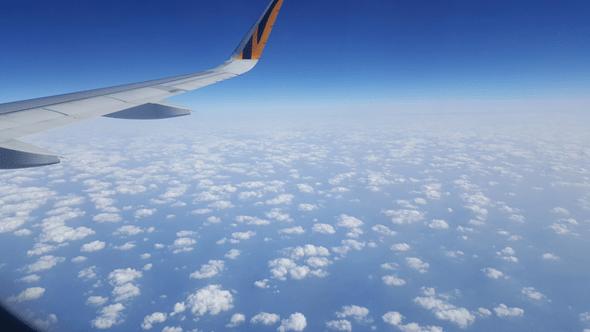 虎航高雄直飛日本初體驗,大阪只要 2,099 好便宜! image-31