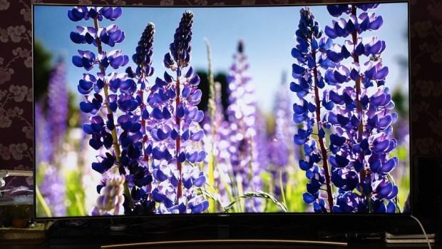 幾可亂真的超真實色彩!Samsung Q8C 65 吋 QLED 量子點電視開箱、評測 7073373