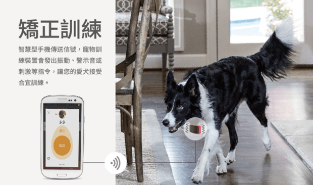 GARMIN 竟推出「電擊」寵物訓練裝置,吠叫、靠近禁區自動放電,極不人道 020-1