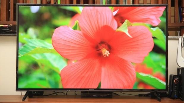 Panasonic 49 吋 4K電視(TH-49FX600W),功能齊全,最超值的平價首選 IMG_8517