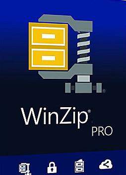 WinZip Professional