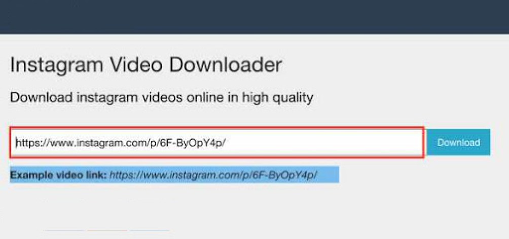 Instagram Video Downloader latest version