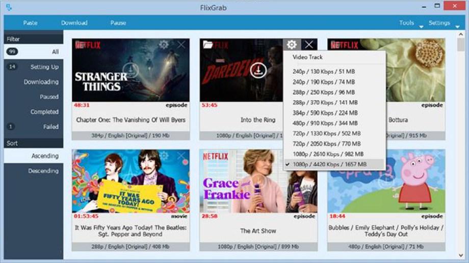 FlixGrab+ Premiumlatest version