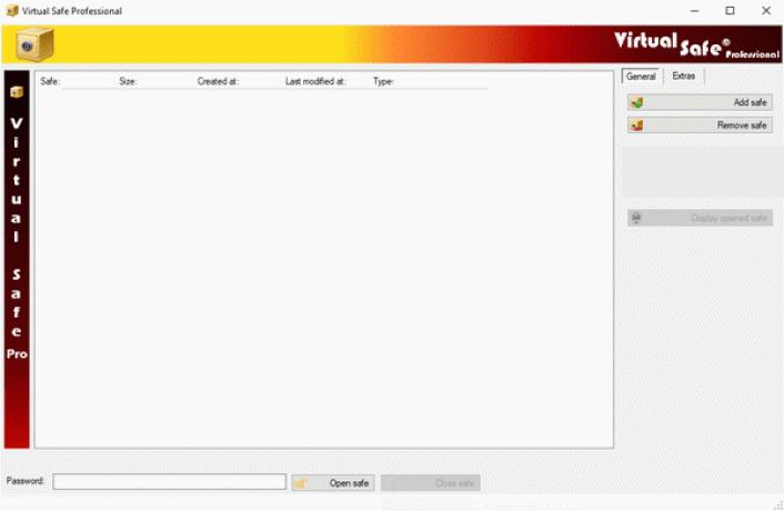 Virtual Safe Professional windows