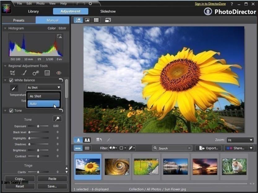 CyberLink PhotoDirector Ultra windows