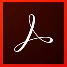 Adobe Acrobat Pro DC 19.010 Crack