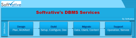 Softvative DBMS Service Model