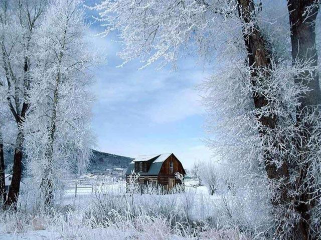 free-winter-screensaver-3799.jpg (640×480)