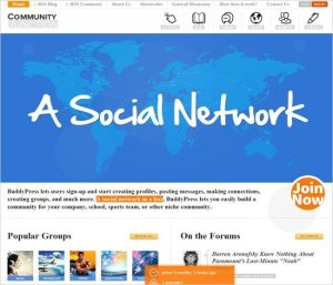 4-excellent-wordpress-social-networking-themes-2015-community-junction