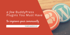Best BuddyPress Plugins 2019 ( Reviewed by 2180 Community owners)