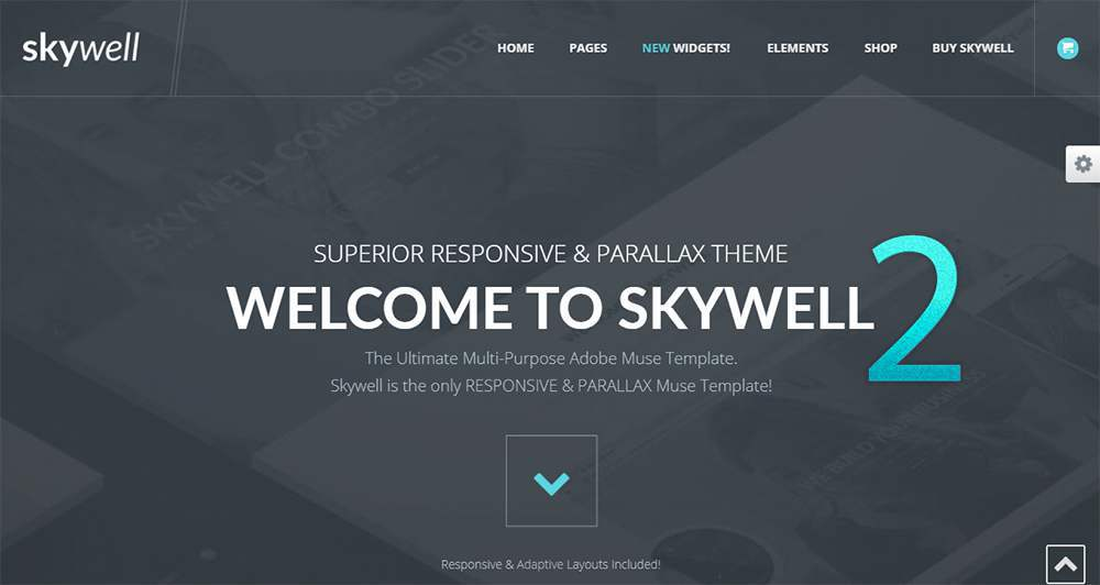 Skywell Muse Template