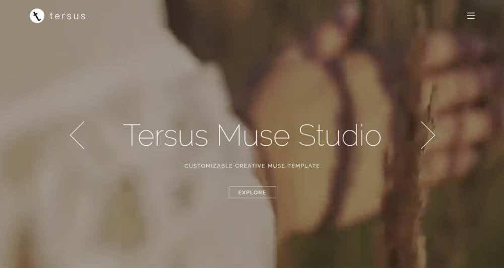 Tersus Muse Template