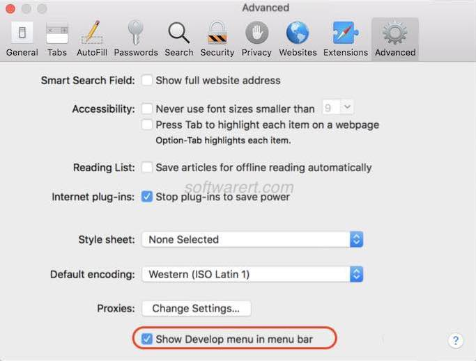 safari enable developer tools
