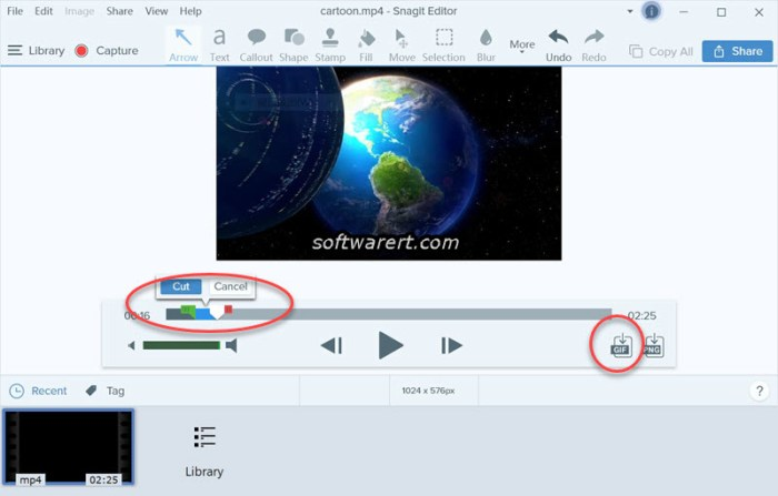 convert video to gif using snagit for windows on pc