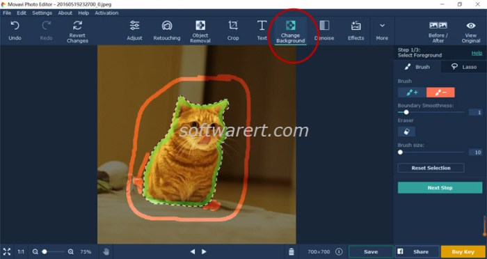 change background - select foreground using photo editor for windows movavi