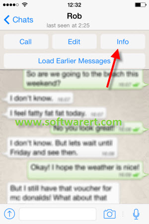 whatsapp chats info on iphone
