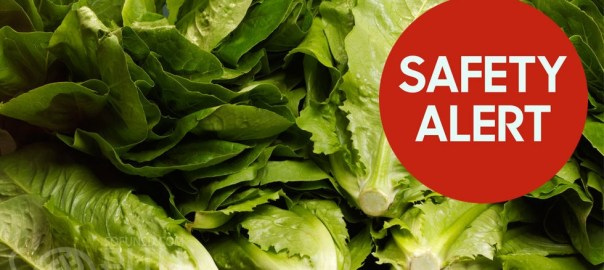 gallery-1515087999-index-romaine-lettuce-safety-alert