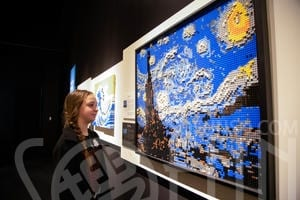 the-art-of-the-brick_10