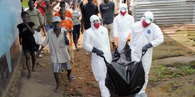 Global response to Ebola marked by lack of coordination and leadership, experts say