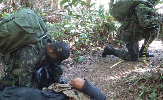 Chinese Seek Brazilian Assistance With Jungle Training