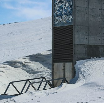 The Syrian War Has Prompted the First Ever Withdrawal From the Doomsday Seed Vault | TIME