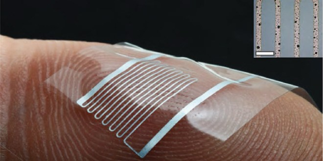 Stretchable electronics that can quadruple in length | KurzweilAI