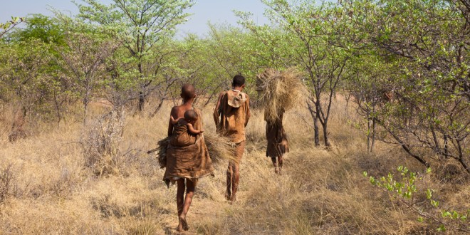 Modern hunter-gatherers show value of exercise | ScienceDaily