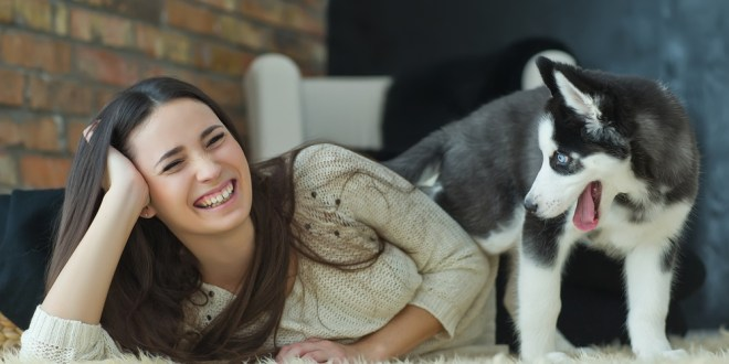 Who's a good boy? Why 'dog-speak' is important for bonding with your pet | Science Daily
