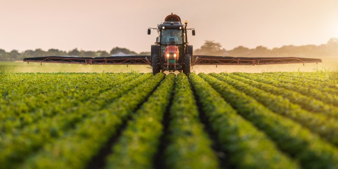 Commercial pesticides: Not as safe as they seem | Science Daily