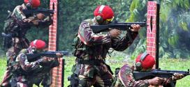 Indonesia's Kopassus special forces unit joins police hunt for Islamic militants after suicide attacks  SCMP
